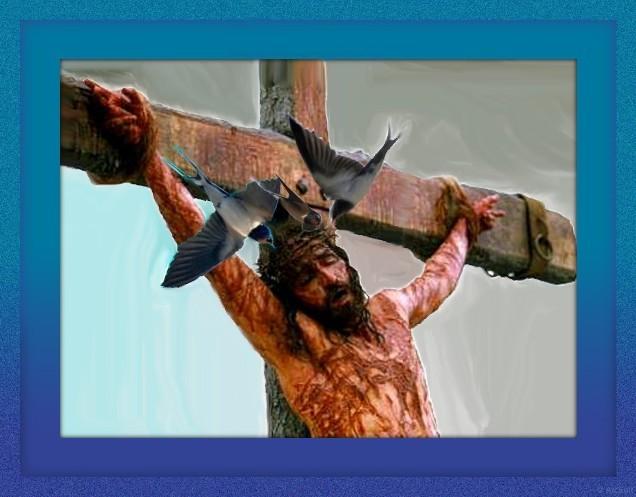 Leyenda Sobre Las Golondrinas Y La Corona De Espinas De Cristo